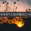 【読書録】人生の短さについて 他2篇