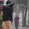 #457 台風、過去40年で変化 多く、強く、遅くなった… 気象庁が分析