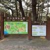 吹上浜海浜公園キャンプ場はファミリー向けには最高!!