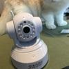 見守りカメラ