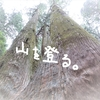 日帰りの登山なら筑波山で決まり!午後からカメラ持って筑波山に登ってきた②(筑波山神社からの足トレ)【気ままな休日】