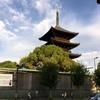 京都の東寺・弘法市に初参戦