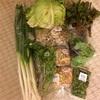 🚗 長野へ帰省④ 新鮮野菜 JAオランチェ 🍄