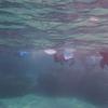 八重山諸島への旅 その12 石垣島白保でシュノーケリング