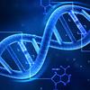 PythonでmRNAの遺伝情報を解読してタンパク質を合成する