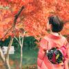 11月中旬~*+秋の宝石★人気の紅葉スポット(関西)+*