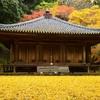 楽しめるのは紅葉だけじゃない 富貴寺の建築様式