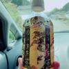 【やってみた】宮城県の茶畑にいってみた【煎茶道・茶道教室・大人の休日】