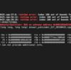 RE (Runtime Error) どこで落ちたのか分かるコンパイルオプション -fsanitize=undefined