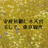 安産祈願に水天宮、そして東京デート 【回顧録】