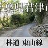 【動画】千葉県君津市 林道 東山線
