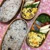 20170524焼鮭とノンフライおから春巻き弁当