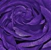 紫色が好きな人ってどんな心理なの?