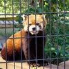 市川市動植物園に行って来ました