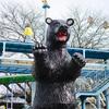 どうぶつとたーくさん触れ合える!ユーモア満載の宇都宮動物園
