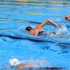 なんで水泳選手に黒人がいないの?