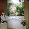 岩合光昭写真展「ねことじいちゃん」に行く。その後、東京駅の「ダバ インディア」で南インド料理を食べる。