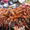 カディス島の市場でタパス!