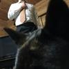 甲斐犬サン、ネェネの趣味を邪魔するの巻Σ(゚∀´(┗┐ヽ(・∀・ )ノ