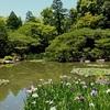 平安神宮の神苑の無料開放日、写真と動画あり【2020年版】