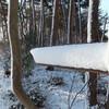 20120218_雪化粧の栃木・三毳山 その3