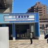 21/02/19 三浦海岸・河津桜再び