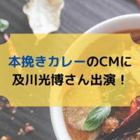 エスビー食品「本挽きカレー」のCMにミッチー登場!