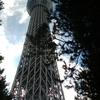 東京に行きました