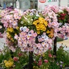 閑歩:桜木町 鉄道発祥の地原標点発見&Garden Necklace Yokohamaは着々と準備中