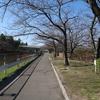 3月12日の荒子川公園