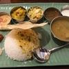 大森の南インド料理 ミールスの店 ケララの風II