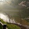 佐久間ダム(千葉県鋸南)