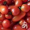 プチトマトの大量消費