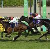 【セントライト記念】皐月賞馬アルアイン、夏越えて「完歩大きく」