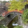 京都1泊旅行 2日目 下鴨神社 河合神社
