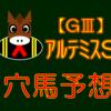 【GⅢ】アルテミスS 結果 回顧