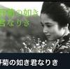 自粛と映画と読書〜野菊の墓と牛丼〜