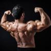 ダンベルで肩の筋肉を効率的に鍛える方法