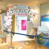 【ネタバレ少し有】小学生に大人気の「ざんねんないきもの展」に行ってきましたレポ!