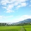 群馬県渋川市にある無人駅、金島駅を散策!