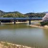 小峰大池(福岡県北九州)