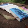 大人が読む児童書「ウィロビー・チェースのおおかみ」3