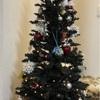 息子と飾ったクリスマスツリー・ロイズのアドベントカレンダーは毎年恒例