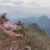 比叡山〔第861歩〕