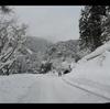 大雪警報発令中…バンビー4と奈良の娘