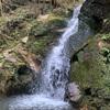 鶯の滝ラン