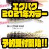 【レイドジャパン】スモラバトレーラーにオススメのワーム「エグバグ2021年カラー」通販予約受付開始!