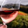 エシェゾーワインとは?味わいや香り、歴史について徹底解説!