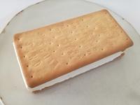 森永製菓「ビスケットサンド」は、無我夢中で食べるべきド定番のサンドアイス。不変的に美味し過ぎる!