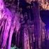 岡山の鍾乳洞は車いすやバギーでも行ける?!井倉洞、満奇洞バリアフリー実態調査。
